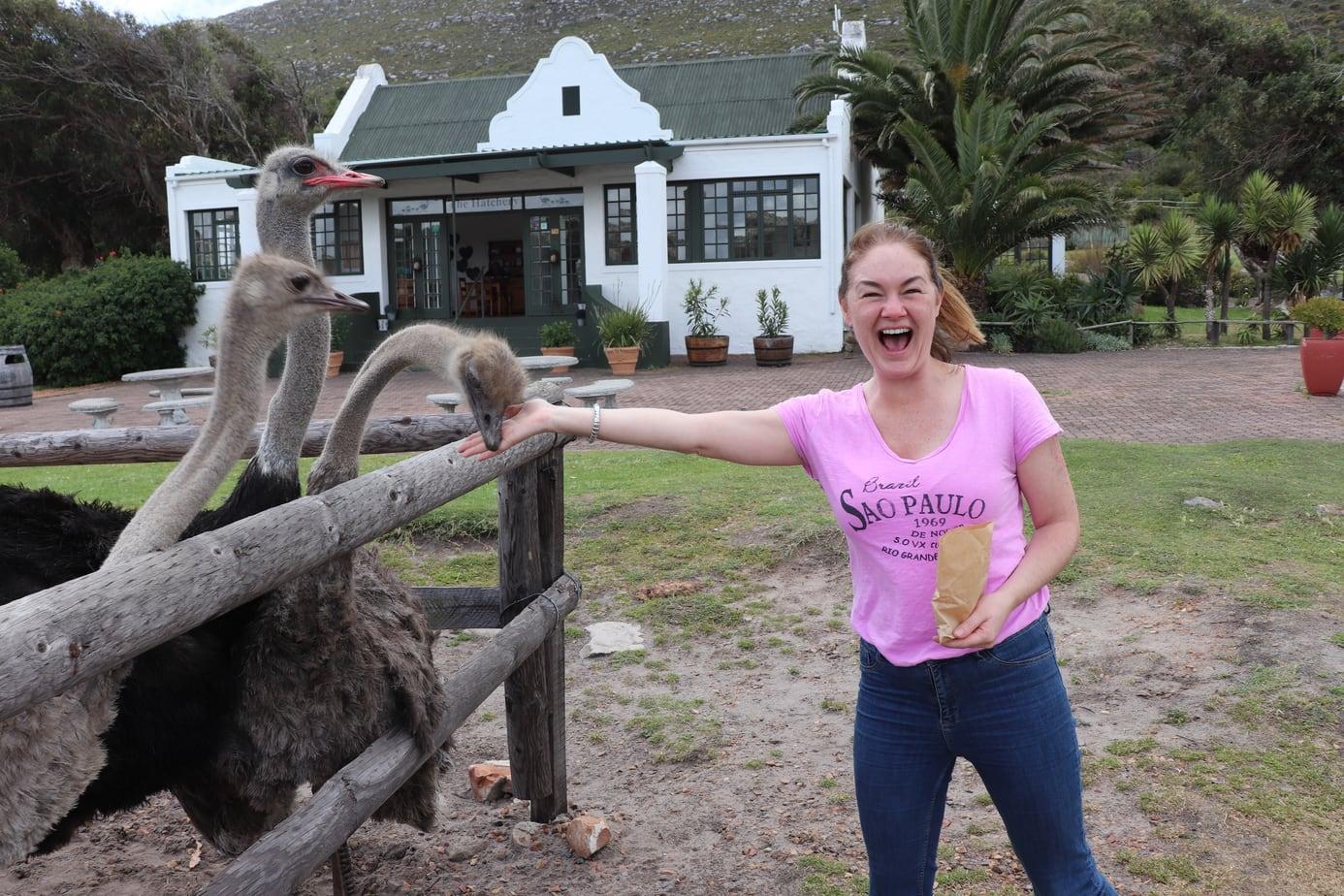 Geraldine Feeding the Ostrich