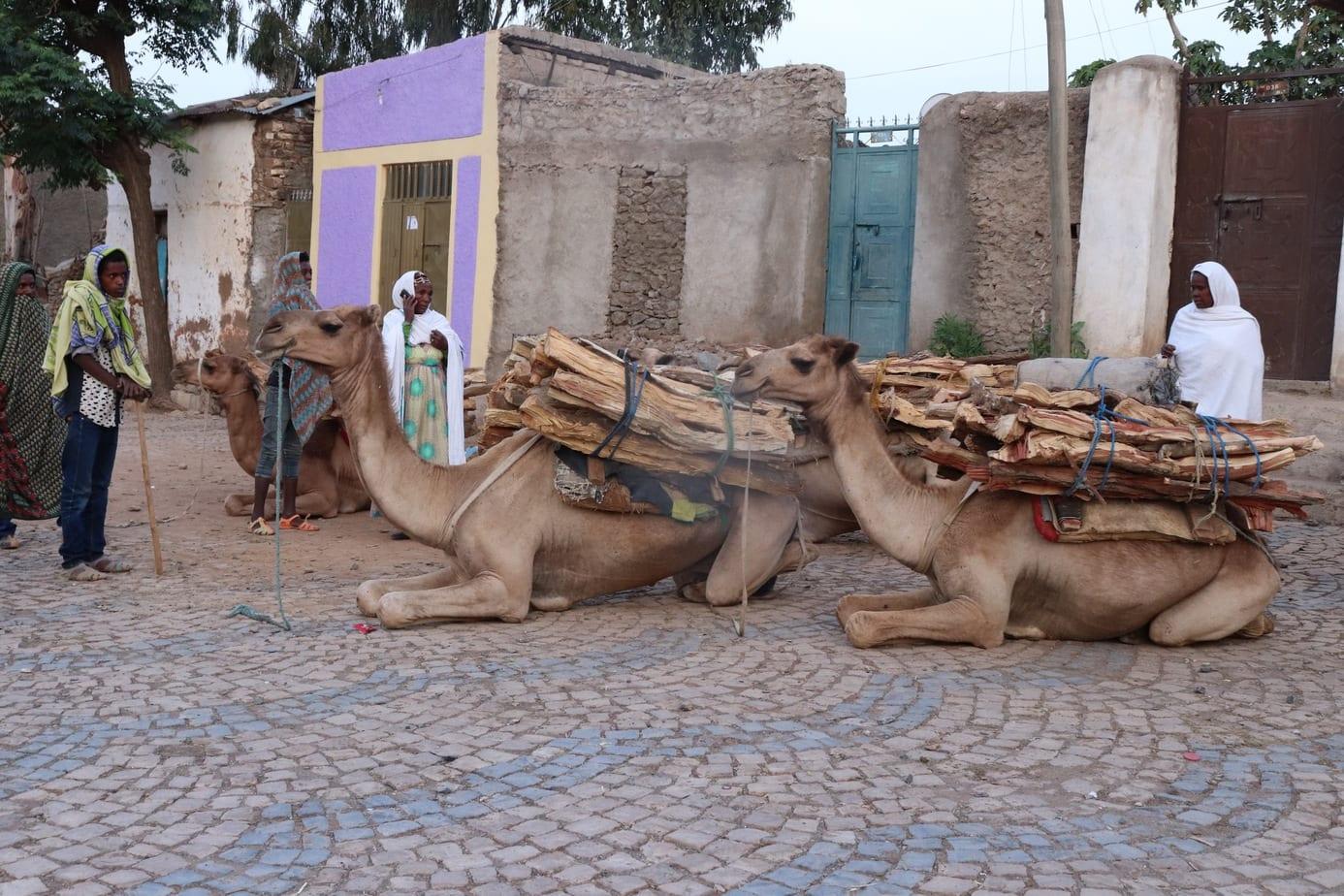 Axum Ethiopia